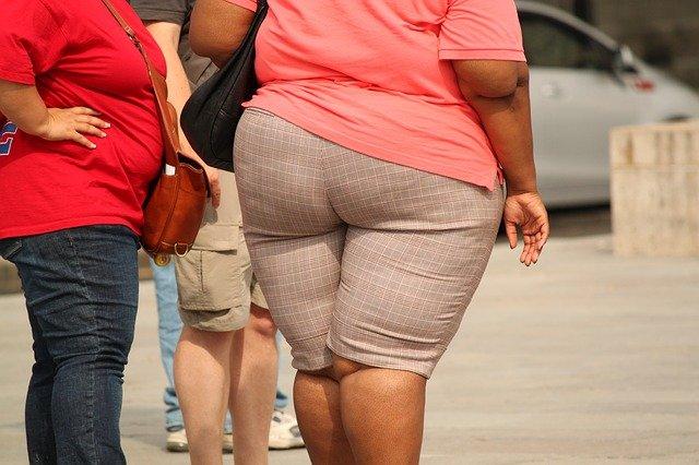肥満フローラ